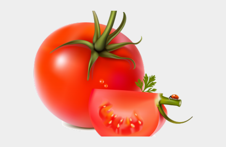 sliced tomatoes clipart, Cartoons - Tomato Clipart Clear Background - Vector Free Download All