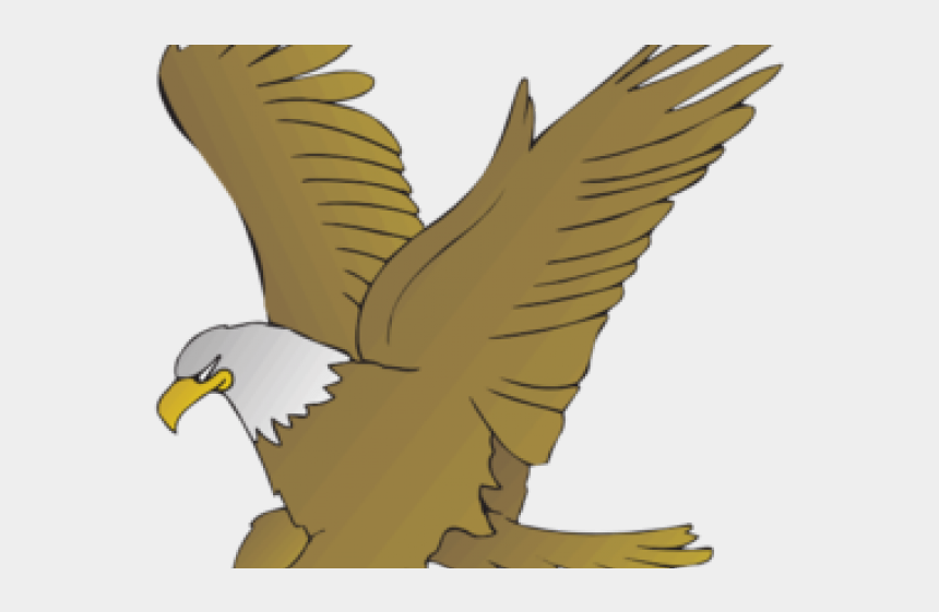 volcano clipart animated, Cartoons - Bird Of Prey Clipart Animated - Drawing Of Birds With Names