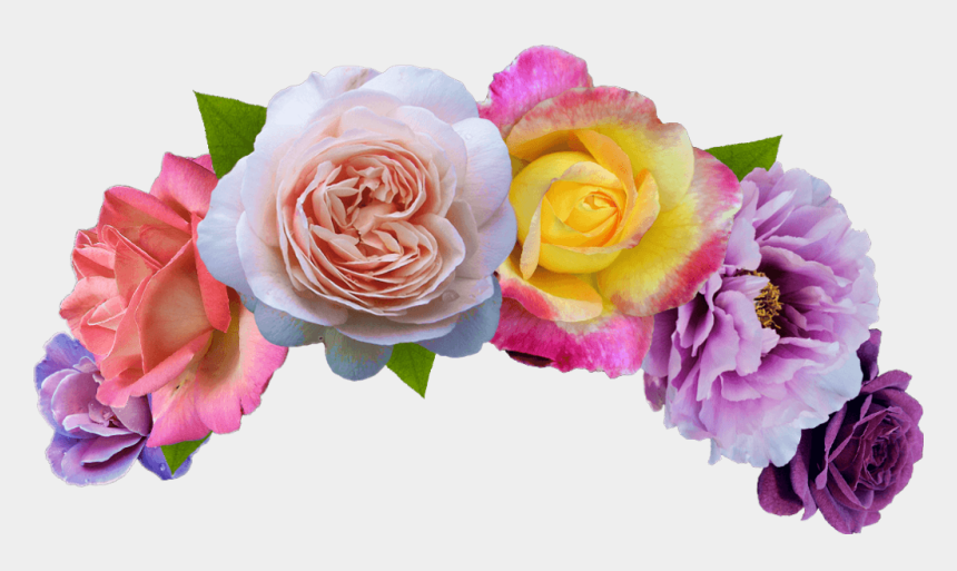 Flowercrown Flower Crown Flowers Headband Rose Flower Crown Png Cliparts Cartoons Jing Fm Search, discover and share your favorite flower crown gifs. flowercrown flower crown flowers
