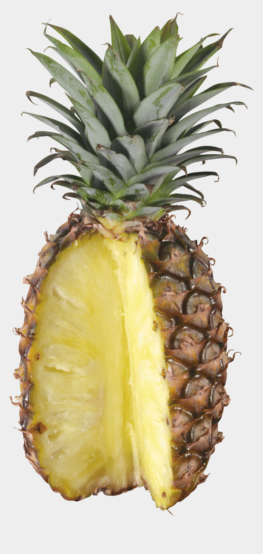 pineapple clipart no background, Cartoons - Pineapple Png Transparent - Kenwood Juice Extractor Jem500ss