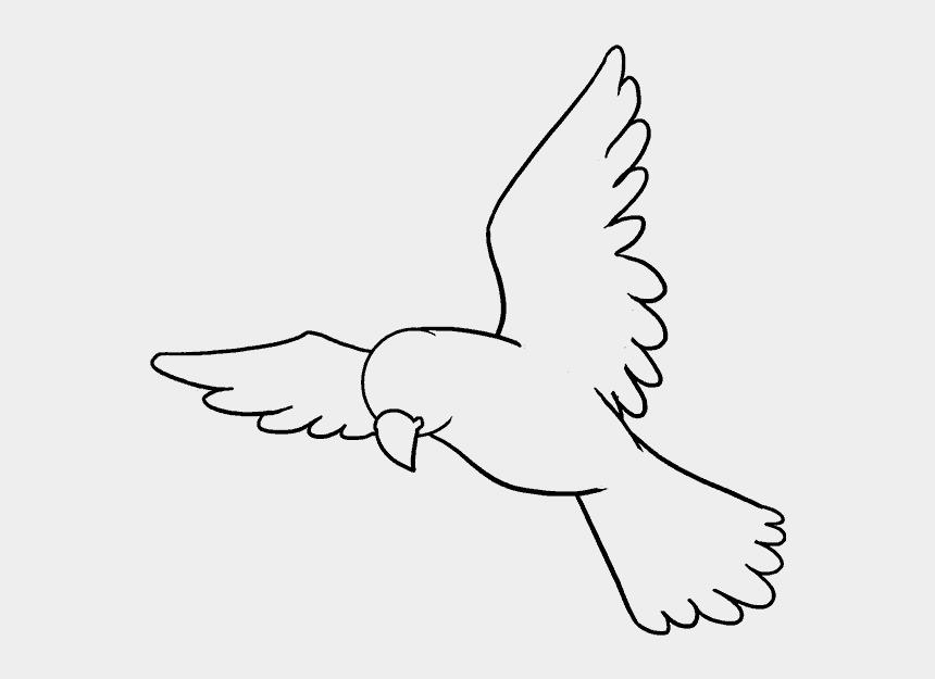bird head clipart, Cartoons - Drawn Head Bird - Bird Drawing