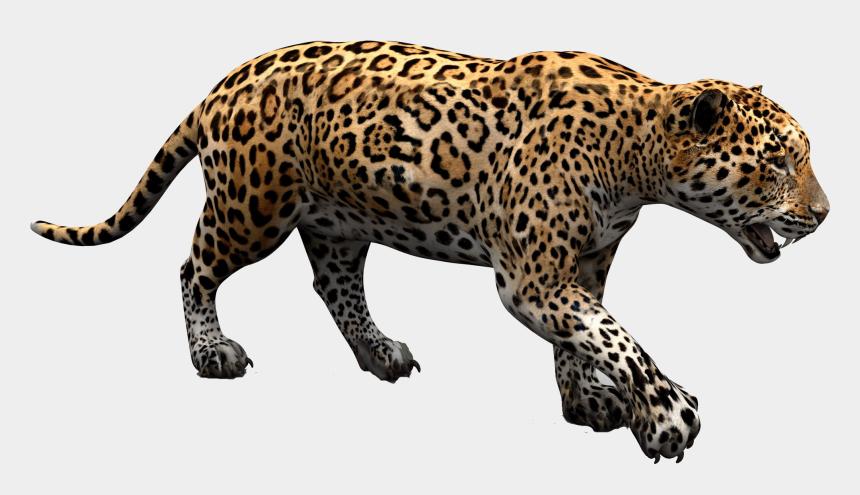 jaguar clipart, Cartoons - Download Png Image Report - Jaguar Png