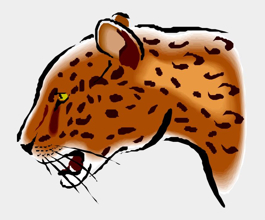 jaguar clipart, Cartoons - Free Jaguar Clipart - Jaguar School