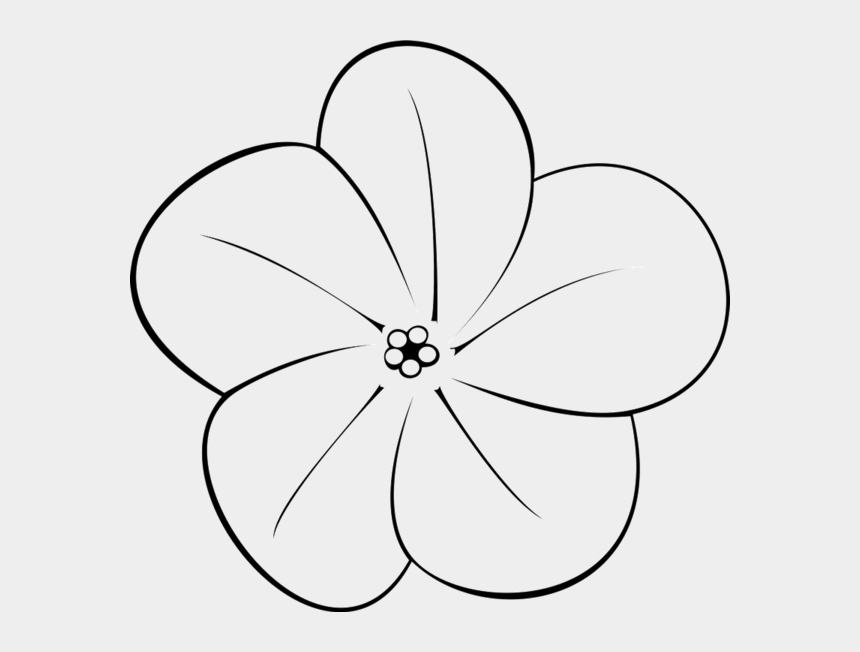 flower clipart black and white, Cartoons - Plumeria Flower Clipart - Flowers Art Black And White Plumerias