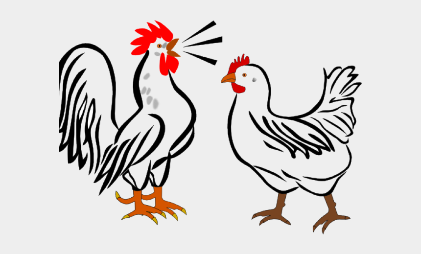 chicken clipart, Cartoons - Rooster Clipart Fowl - Rooster Clip Art