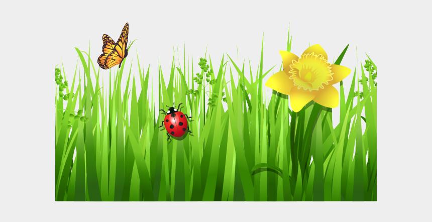 spring clipart, Cartoons - Spring Clipart Nature - Grass Flowers Clip Art