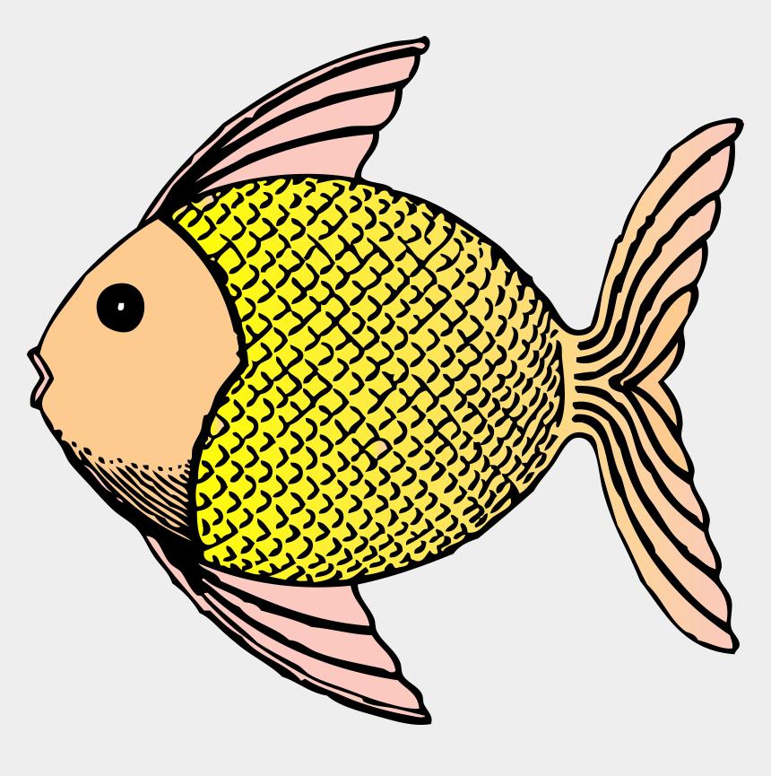 fish clipart, Cartoons - Fish Cliparts Clipartprogo - Fish Clip Art