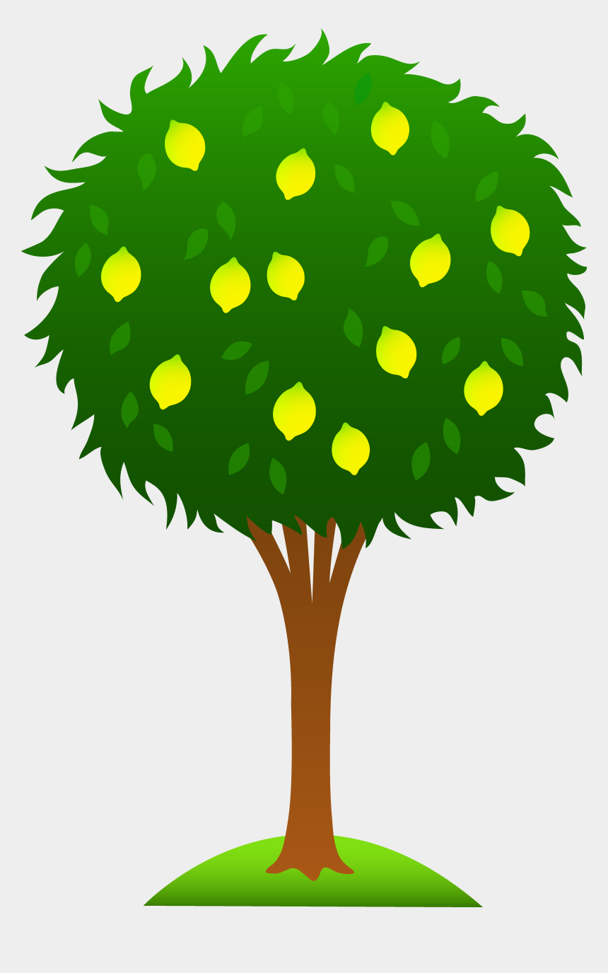 tree clipart, Cartoons - Cartoon Lemon Tree Clipart - Lemon Tree Drawing Easy