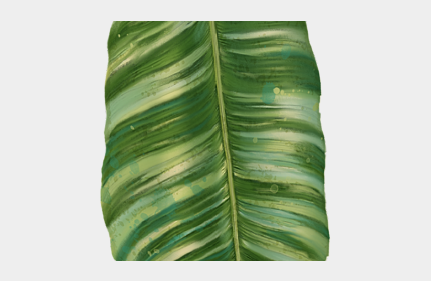 green banana clipart, Cartoons - Green Leaves Clipart Banana Leaf - Tropical Leaves Transparent Png