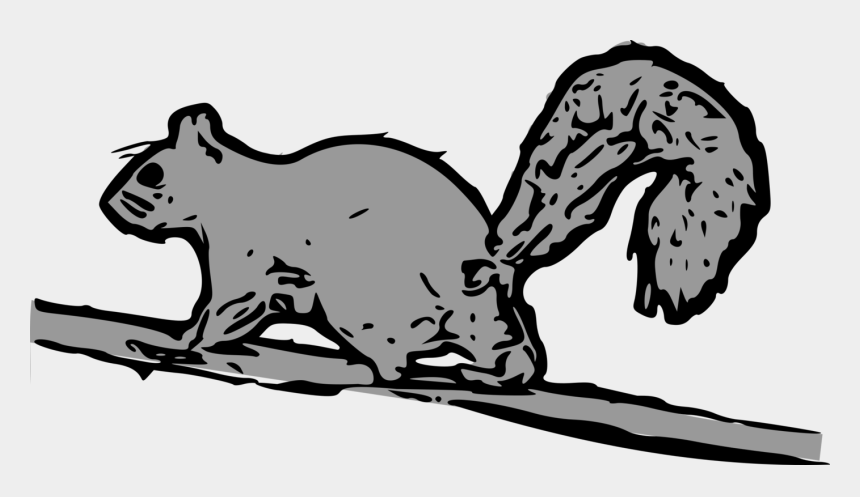 gray squirrel clipart, Cartoons - Eastern Gray Squirrel Black Squirrel Western Gray Squirrel - Cartoon Squirrel Running Up Tree