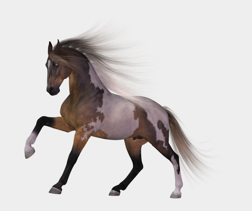 horse clipart transparent background, Cartoons - Download Horse Png Transparent Images Transparent Backgrounds - Horse Png Transparent Background