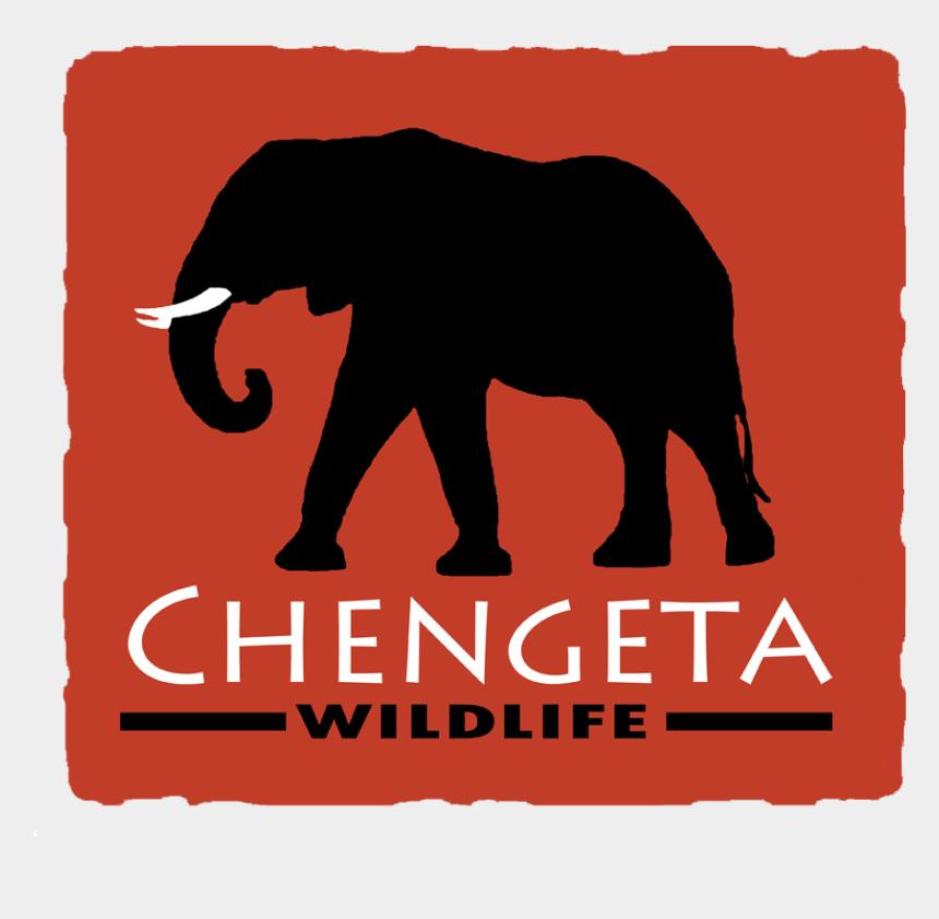 elephants holding tails clipart, Cartoons - Chengeta Wildlife - Indian Elephant