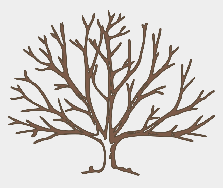 winter leaves clipart, Cartoons - How To Draw Winter Trees - Bare Tree Clipart