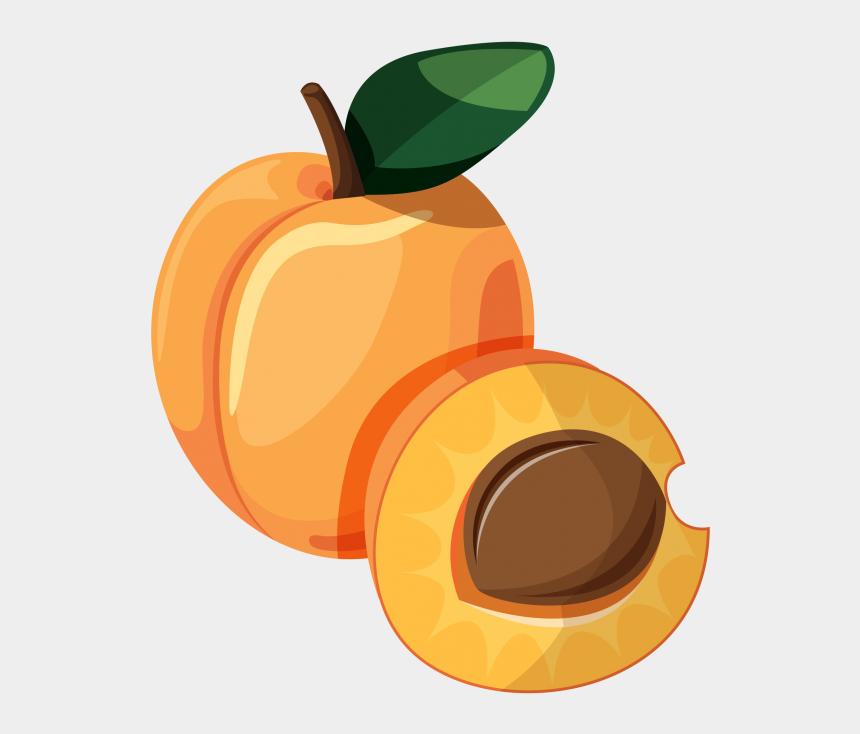 peach slice clipart, Cartoons - Apple