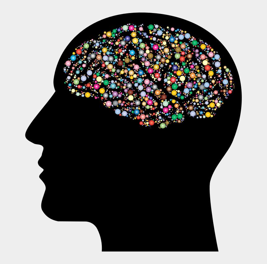 brain memory clipart, Cartoons - Psychology Brain Clipart , Png Download - Clipart Human Brain