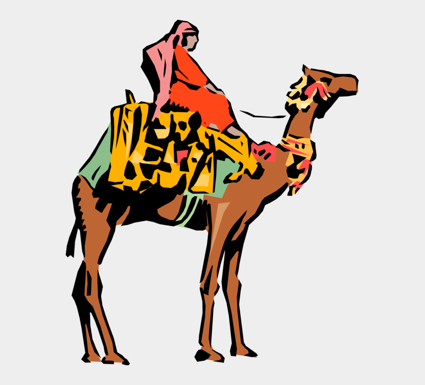 camel caravan clipart, Cartoons - Vector Illustration Of Dromedary Beast Of Burden Camel - Ancient Egyptian Order Mystic Shrine