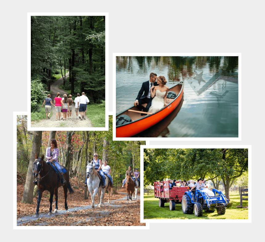 horse trail riding clipart, Cartoons - Hitch Wagon Rides - Stallion
