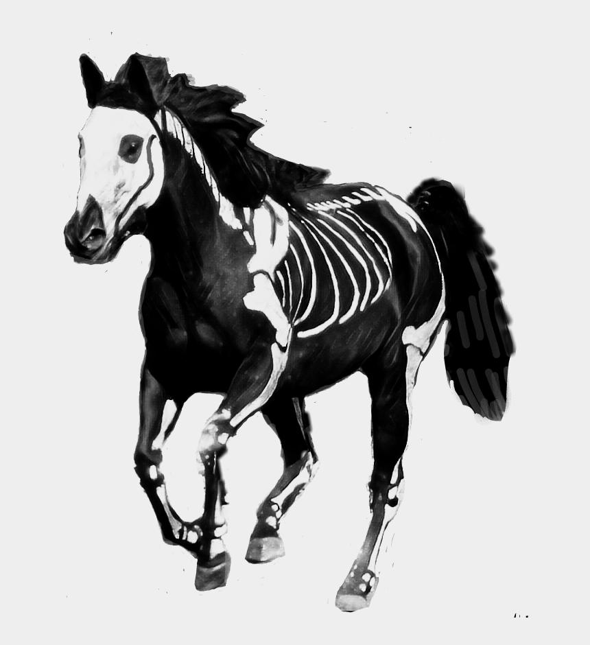 paint horse clipart, Cartoons - #paint #horse #skeleton - Mane