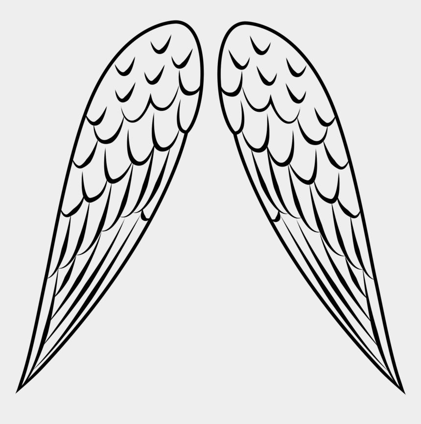 angel wings clipart, Cartoons - Bird Wing Clipart - Simple Bird Wing Drawing