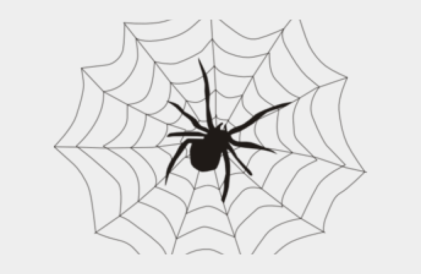 spiderweb clipart, Cartoons - Spider With Web Drawing
