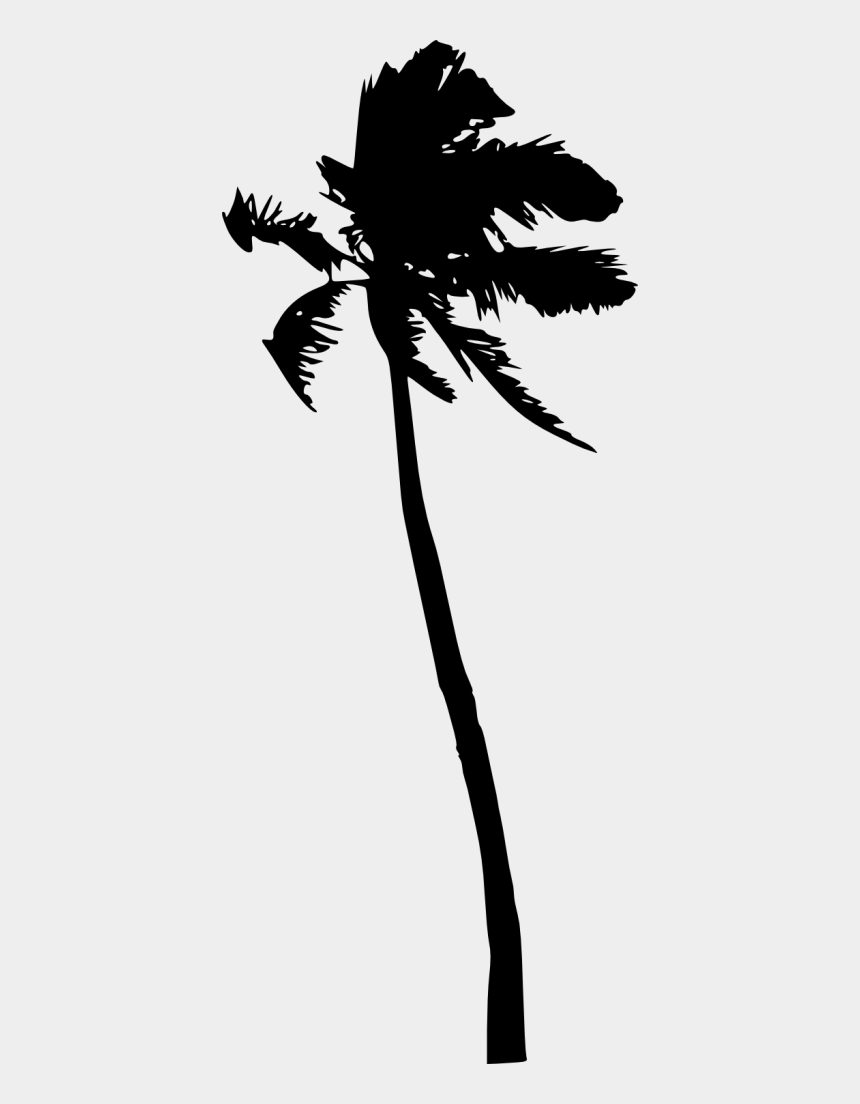 palm tree silhouette clipart, Cartoons - 1764 × 1500 Px - Portable Network Graphics