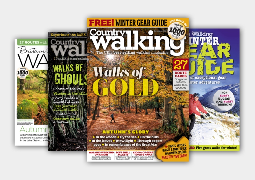 nate the great clipart, Cartoons - Nov Issue Splay Big Canvas Copy - Country Walking Magazine