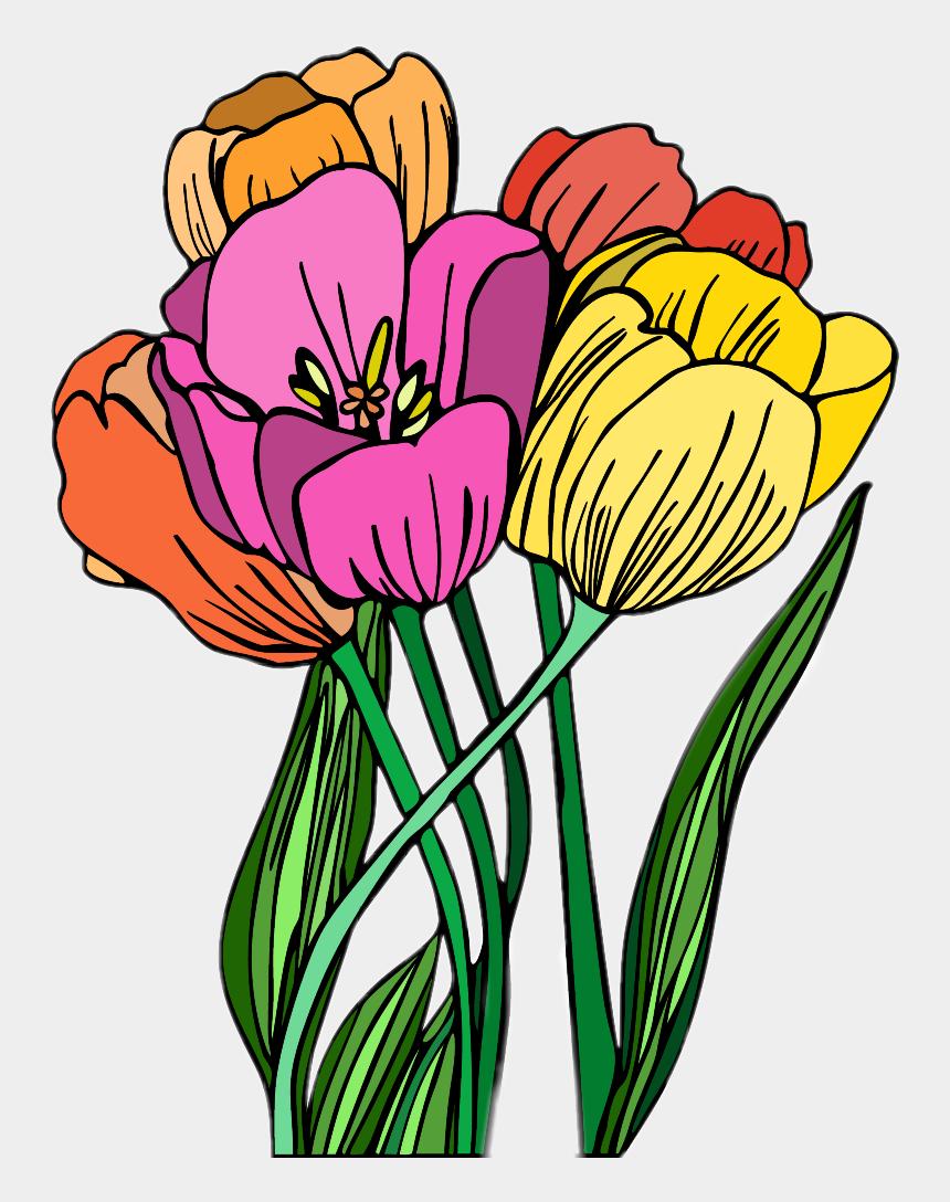 spring tulips clipart, Cartoons - #flower #tulips #spring - Tulipa Humilis