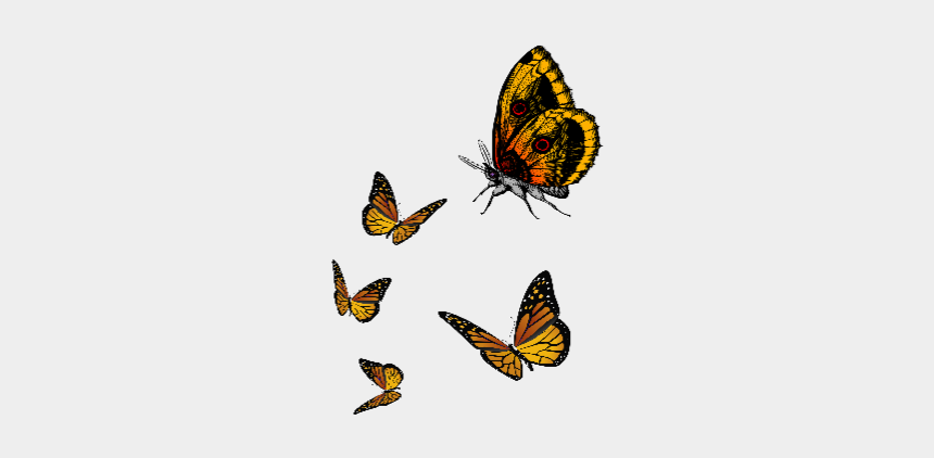 cute fly clipart, Cartoons - #ftestickers #butterfly #cute #fly #yellow - Flying Yellow Butterfly Png