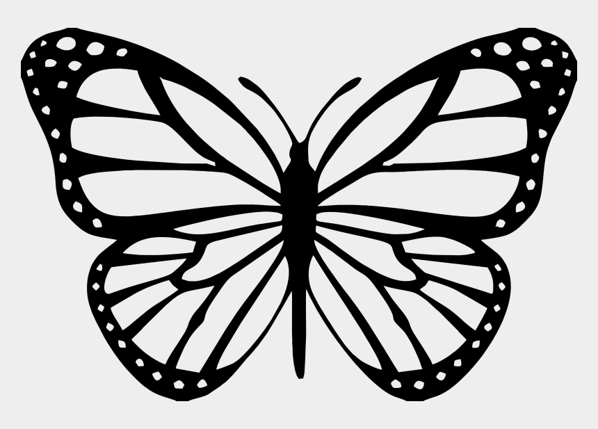 butterfly stroke clipart, Cartoons - Outline Image Of Butterfly