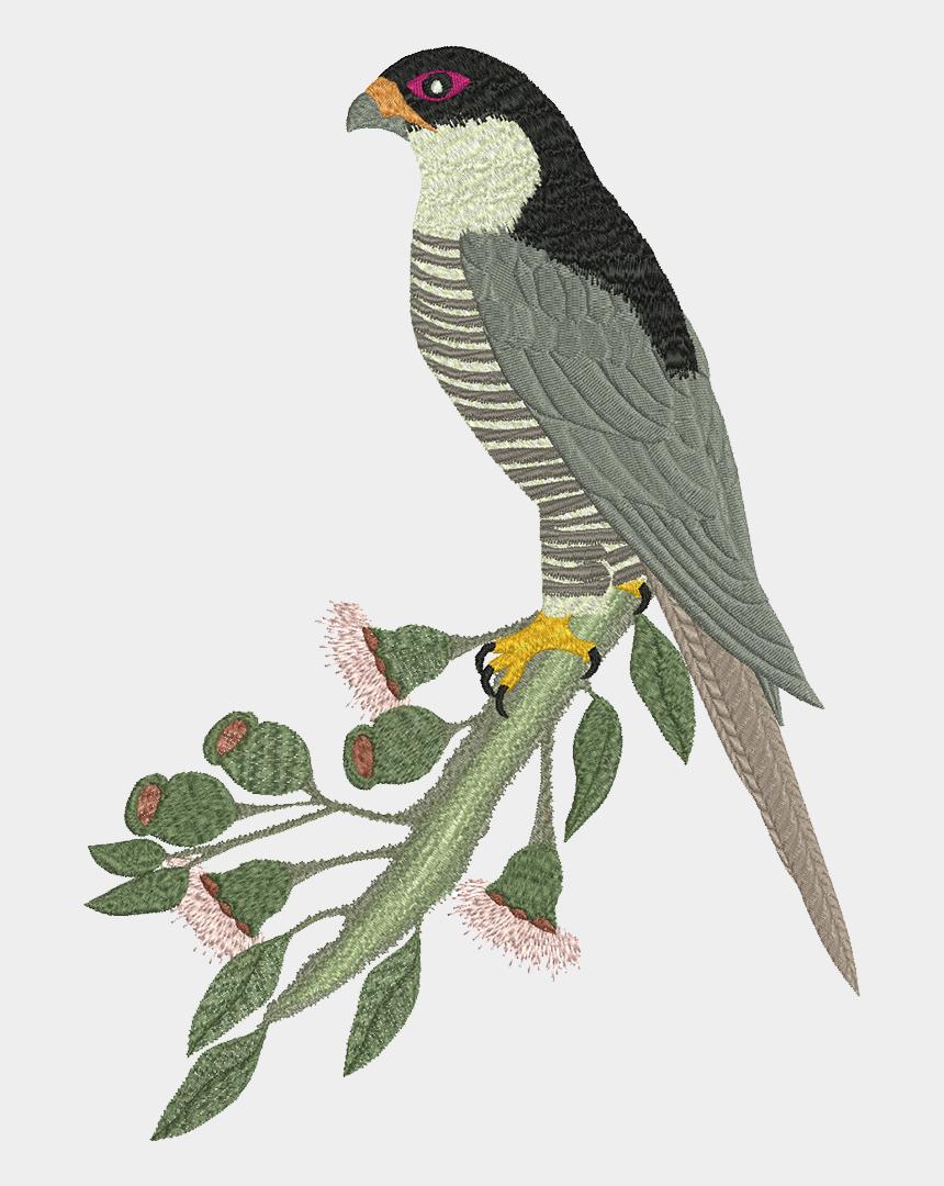 peregrine falcon clipart, Cartoons - Machine Embroidery Design Peregrine - Falcon
