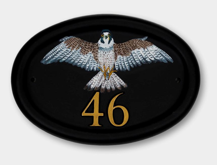 peregrine falcon clipart, Cartoons - Peregrine Falcon Flat Painted House Sign - Hawk
