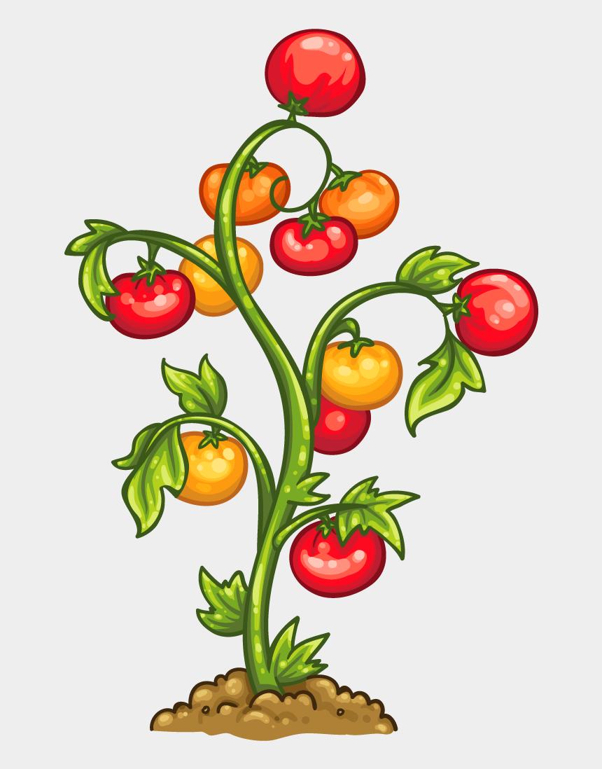 descansar clipart, Cartoons - Ser Impaciente - Png Tomato Plant