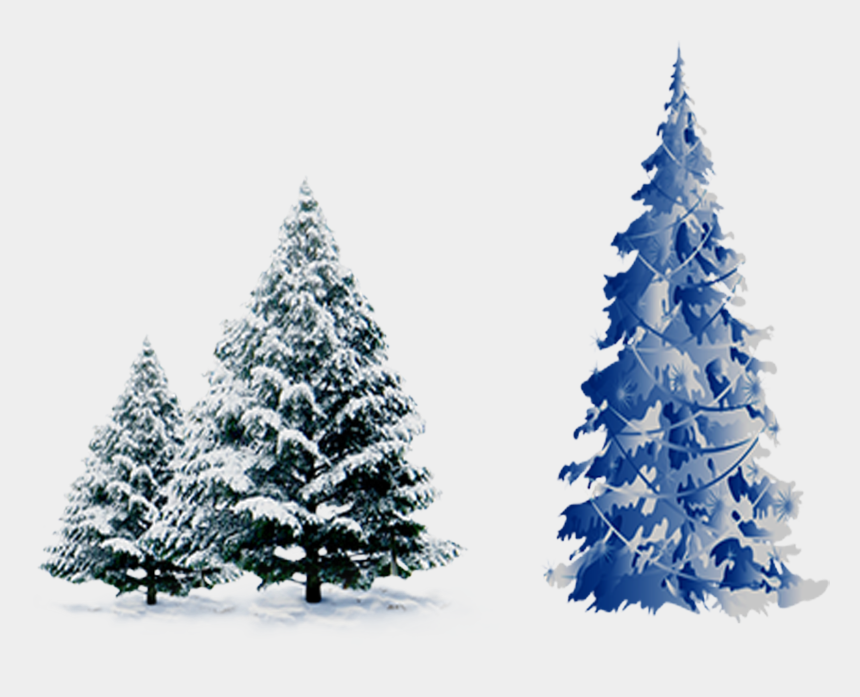 winter pine tree clipart, Cartoons - Snow Pine Png - Blue Christmas Tree Vector Png
