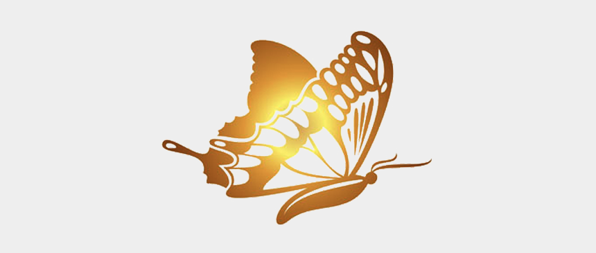 free butterfly border clipart, Cartoons - Butterfly Golden Gold Software Hq Image Free Png - Gold Butterfly Vector Free
