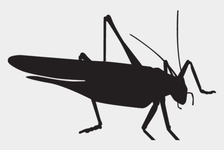free praying mantis clipart, Cartoons - Peach Clipart Black And - Grasshopper Silhouette Png