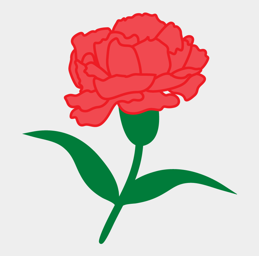 alpha phi alpha clipart, Cartoons - Crest, Colors, Greek Letters, Red Carnation - Cartoon Carnation Transparent