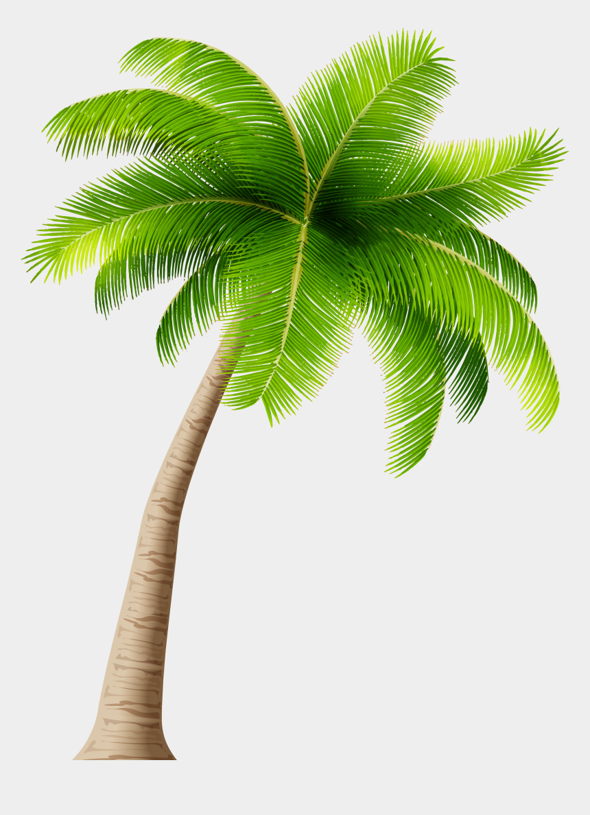 palm trees clipart, Cartoons - Palm Tree Png - Coconut Tree Clipart Png