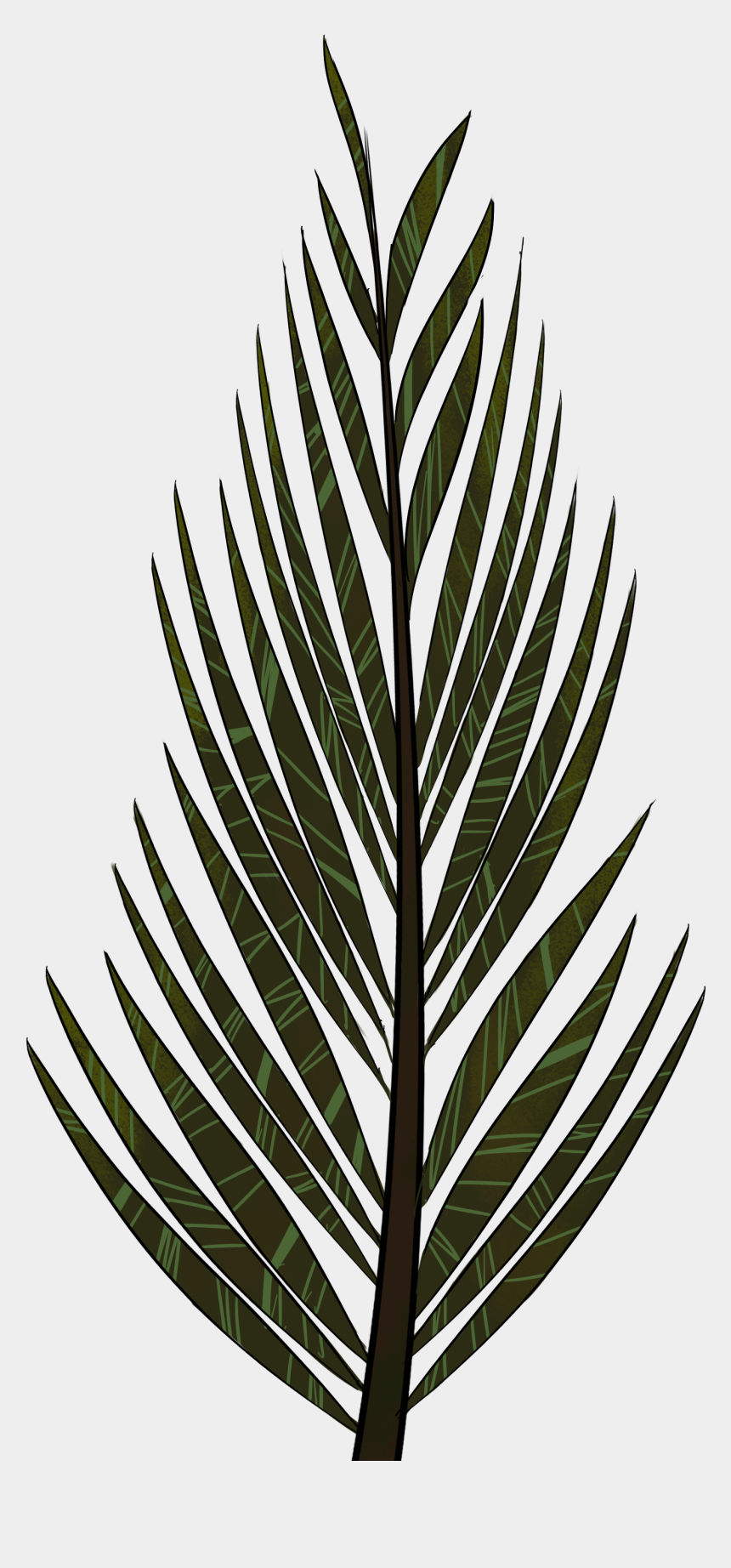 palm trees clipart, Cartoons - Pine Tree Clip Art Png - Pine Tree Leaves Drawing