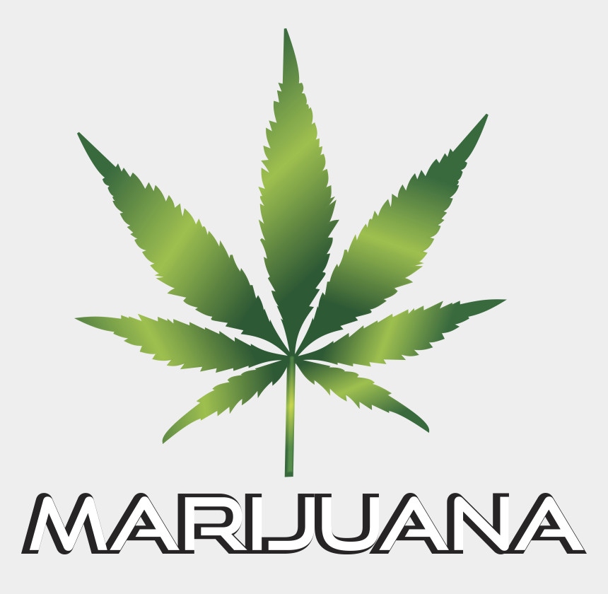 Weed Clipart Transparent Marijuana Leaf Images Png Cliparts Cartoons Jing Fm