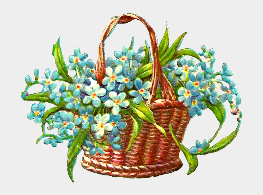 spring flower clipart, Cartoons - Forget Me Not Flower Clip Art - Spring Flower Basket Cliparts