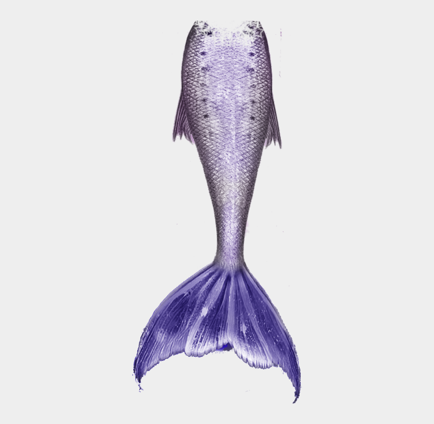 mermaid tails clipart, Cartoons - Clip Arts Related To - Png Transparent Mermaid Tails