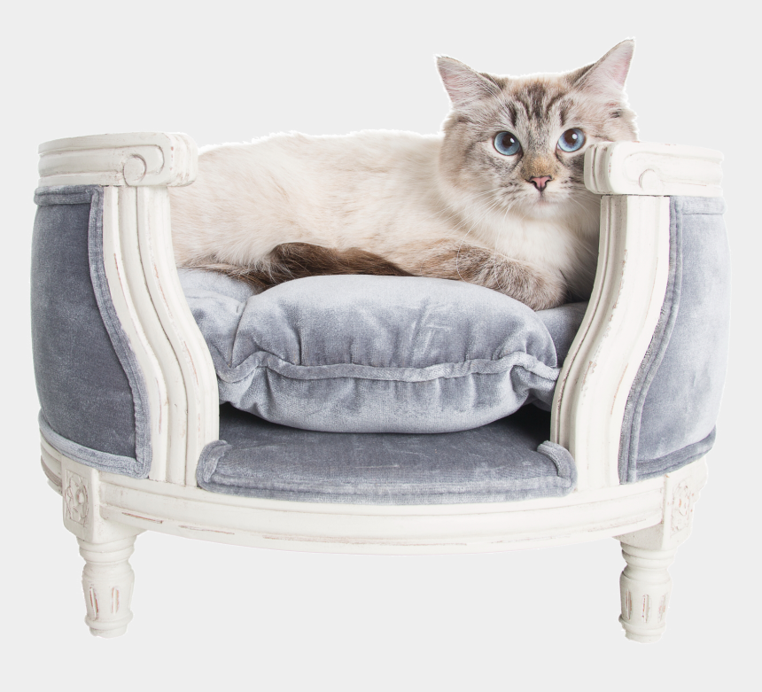 cat bed clipart, Cartoons - Lord Lou Luxury Cat Sofa George Pile Grey - Luxury Cat Sofa Beds
