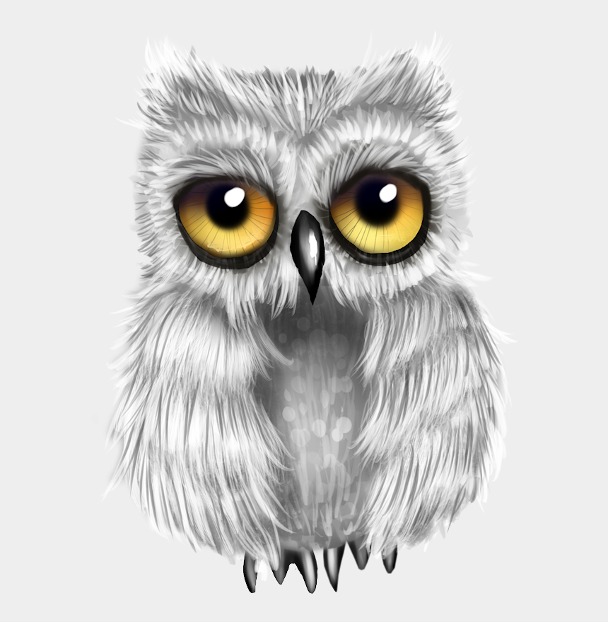 burrowing owl clipart, Cartoons - Image Du Blog Zezete2 - Drawing Great Grey Owl
