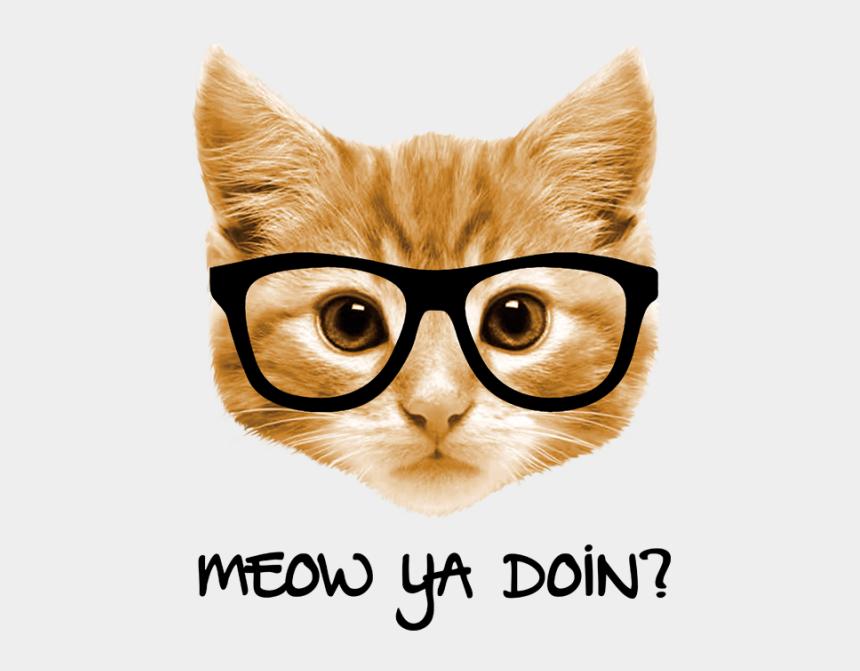 cat eye glasses clipart, Cartoons - Eyeglasses Clipart Cat - Palm Tree Sunglass Reflection