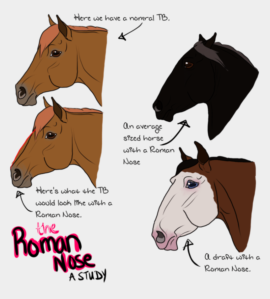 horse eating hay clipart, Cartoons - So, I Decided To Go Supplement Shopping For My Hypothetical - Dog With Roman Nose