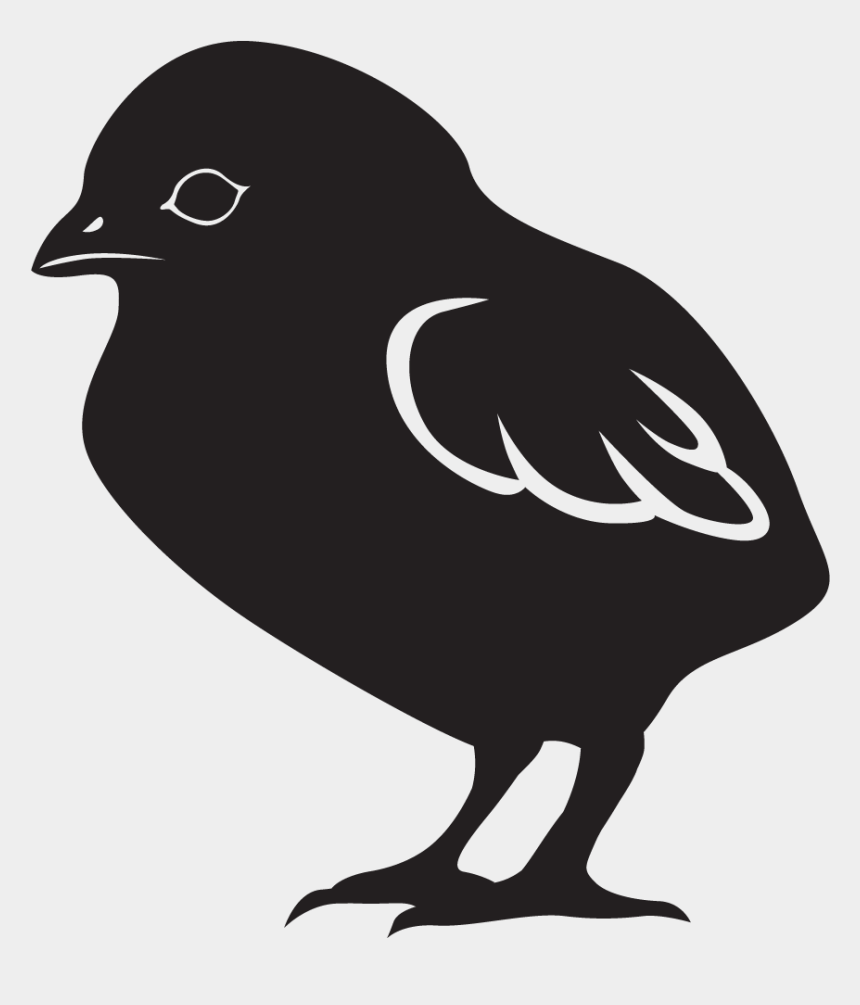 "chick black and white clipart, Cartoons - Chick Starter / Grower Is A ""complete"" Formula For - Old World Flycatcher"