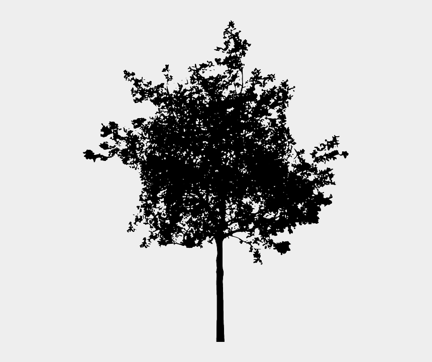bush clipart black and white, Cartoons - Bush Png Black And White Plus - Small Tree Silhouette Png