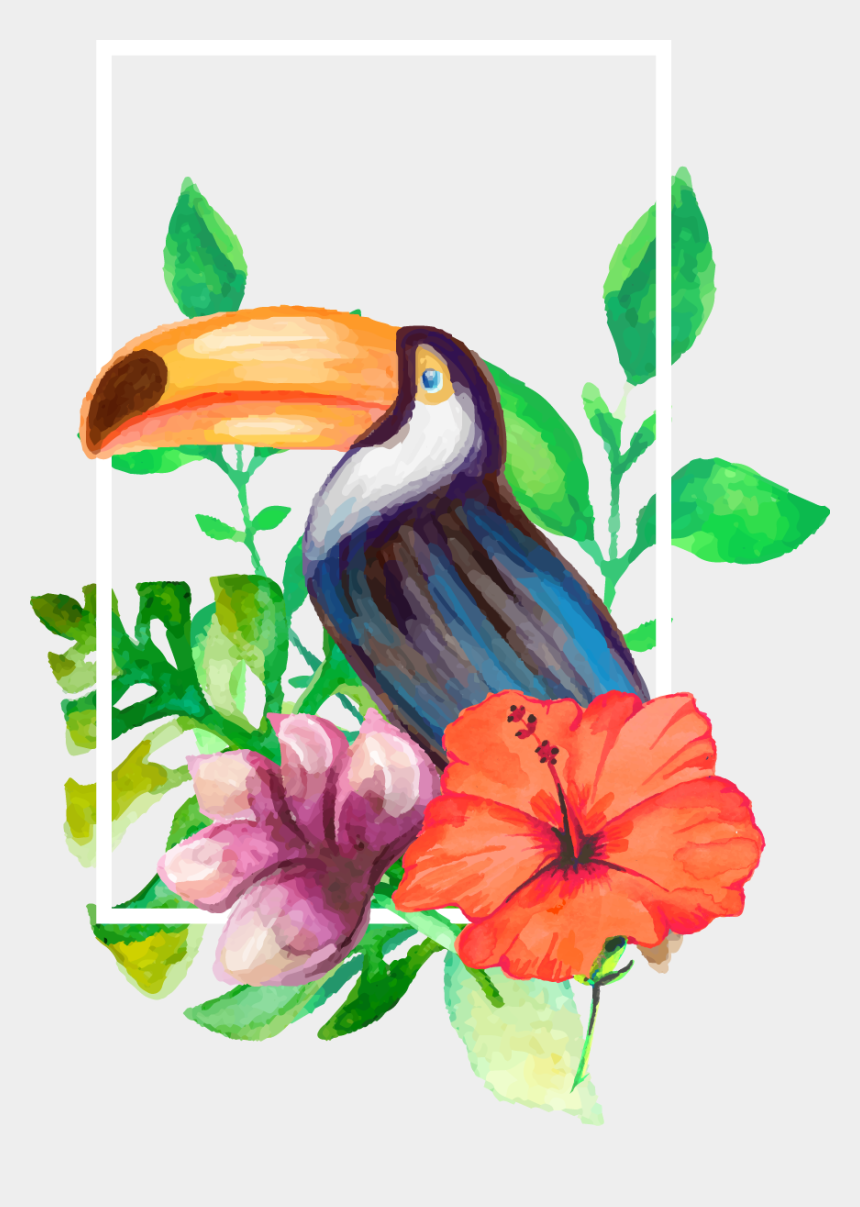 toucan clipart, Cartoons - Clipart Pineapple Toucan - Flower Aesthetic Drawing
