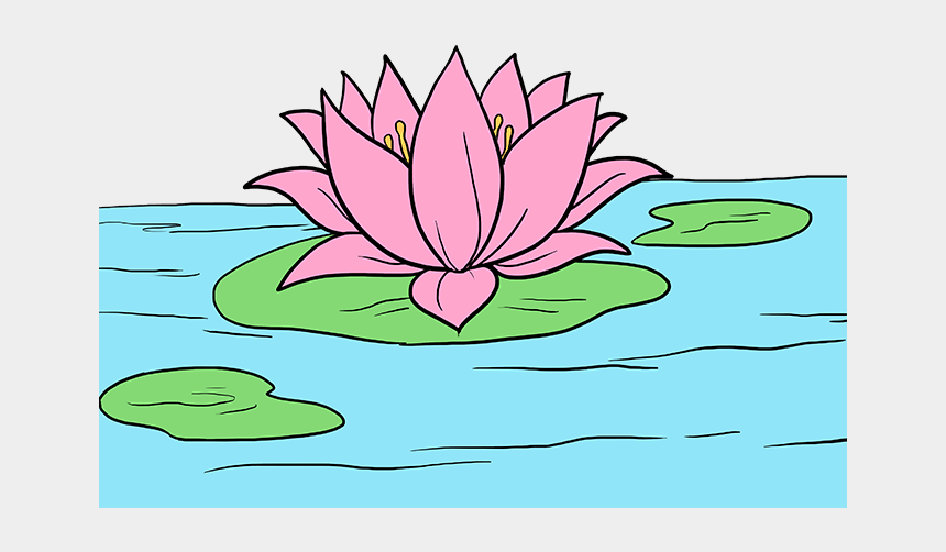 lily pad clipart, Cartoons - Lilypad Drawing Realistic - Water Lily Drawing Easy