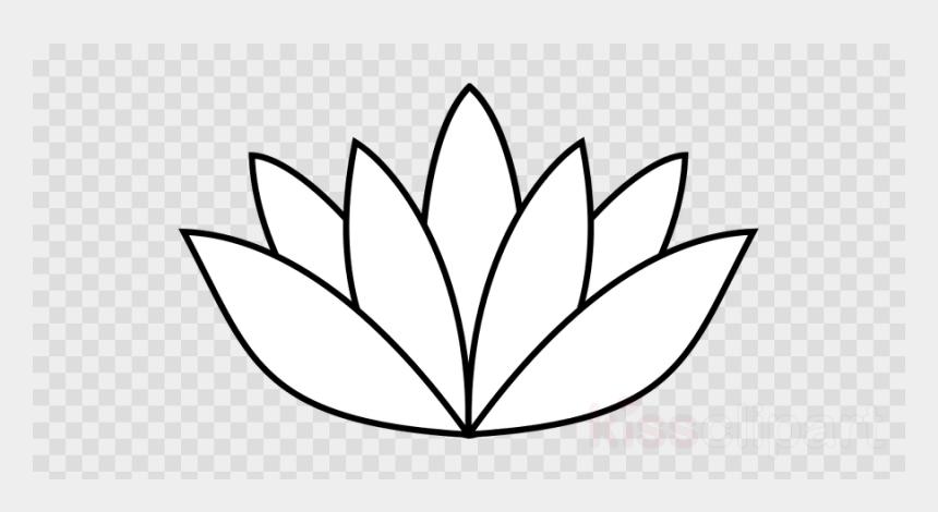 Drawing Details Lotus Flower Sports Balls Transparent Background Cliparts Cartoons Jing Fm